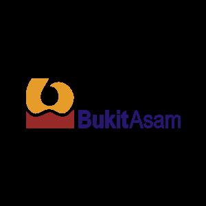 PT Tambang Batubara Bukit Asam (Persero) Tbk